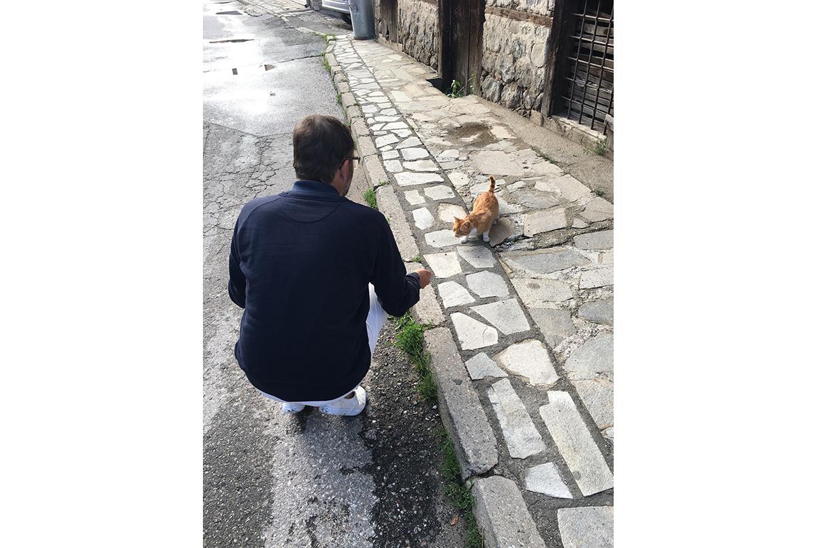 In Pupulden (auch als Plovdiv bekannt) bei der Katzenfütterung